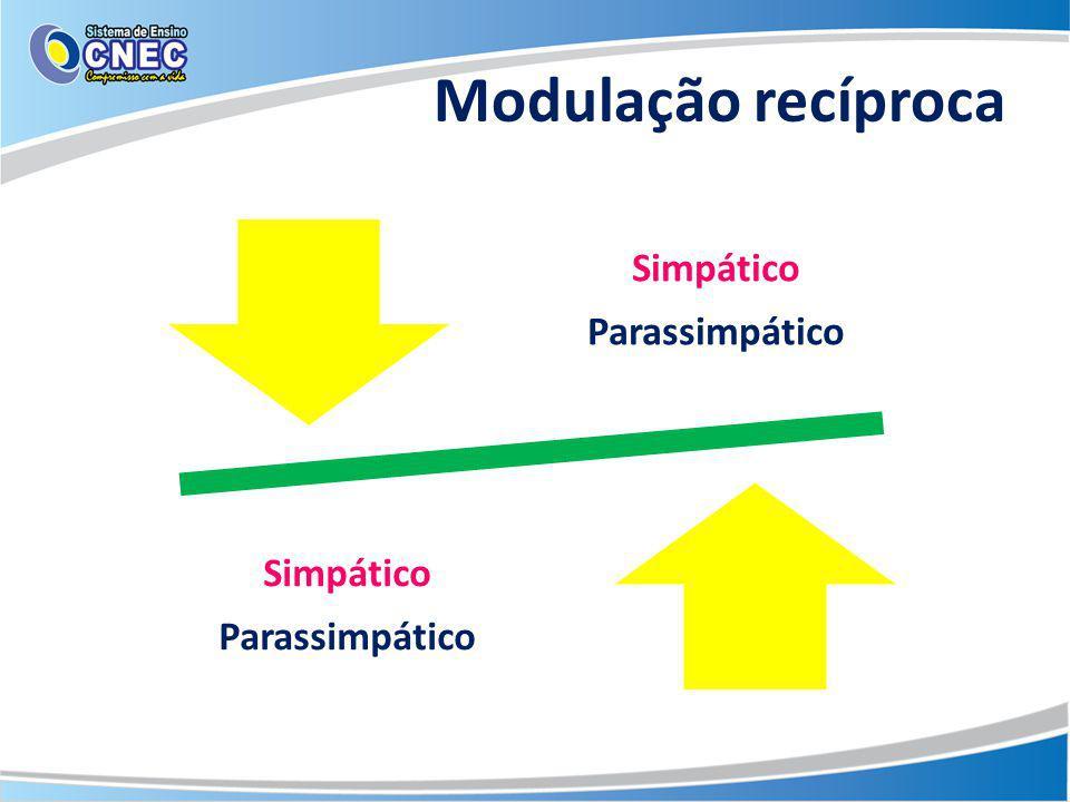 Modulação recíproca Simpático Parassimpático