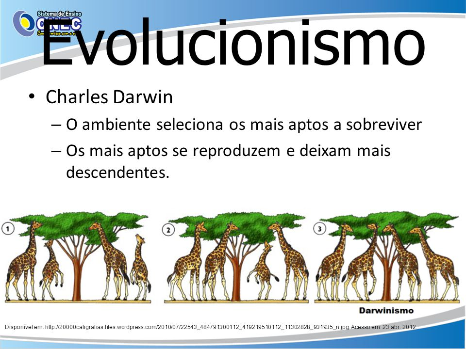 Evolucionismo Charles Darwin