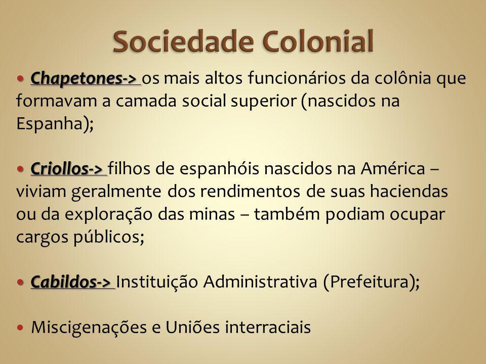 Sociedade Colonial Chapetones-> os mais altos funcionários da colônia que formavam a camada social superior (nascidos na Espanha);