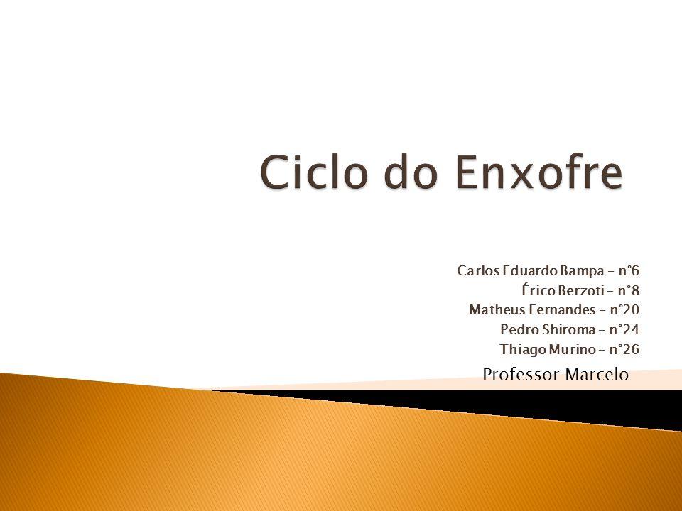 Ciclo do Enxofre Professor Marcelo Carlos Eduardo Bampa – n°6