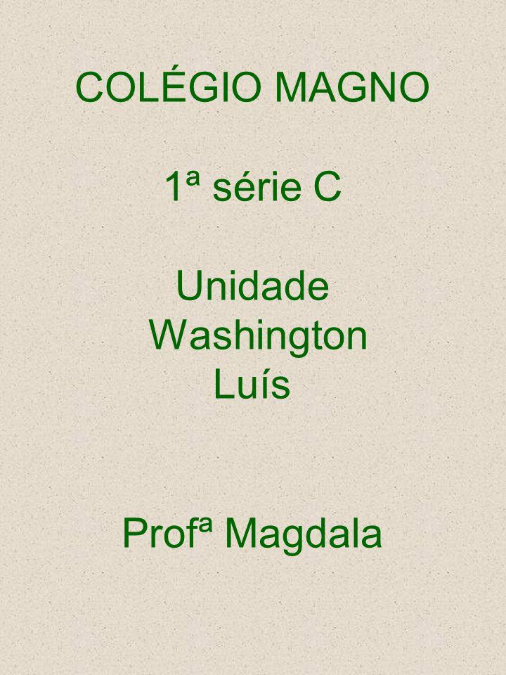 COLÉGIO MAGNO 1ª série C Unidade Washington Luís Profª Magdala