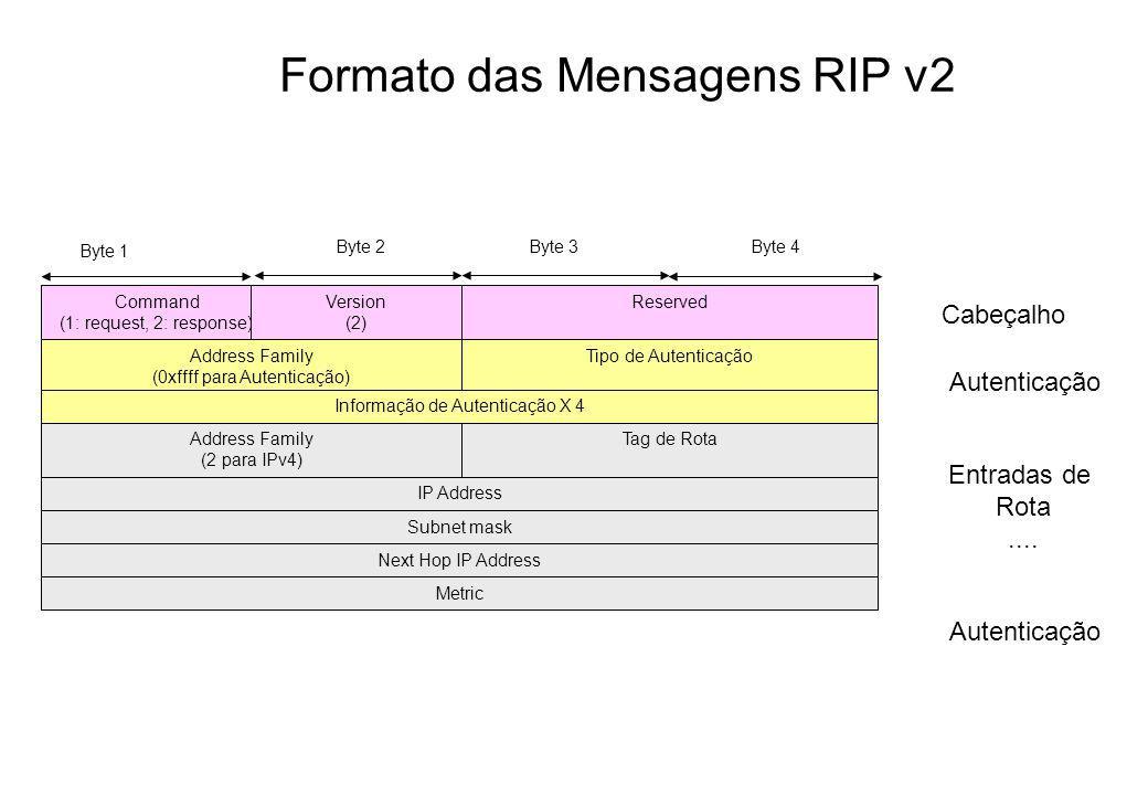 Formato das Mensagens RIP v2