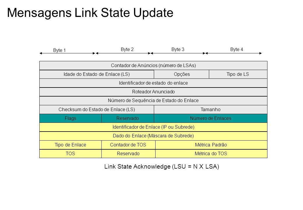 Mensagens Link State Update