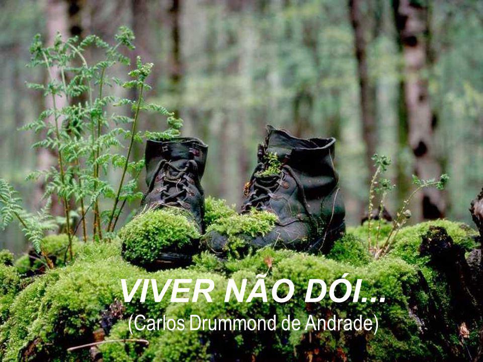 VIVER NÃO DÓI... (Carlos Drummond de Andrade)