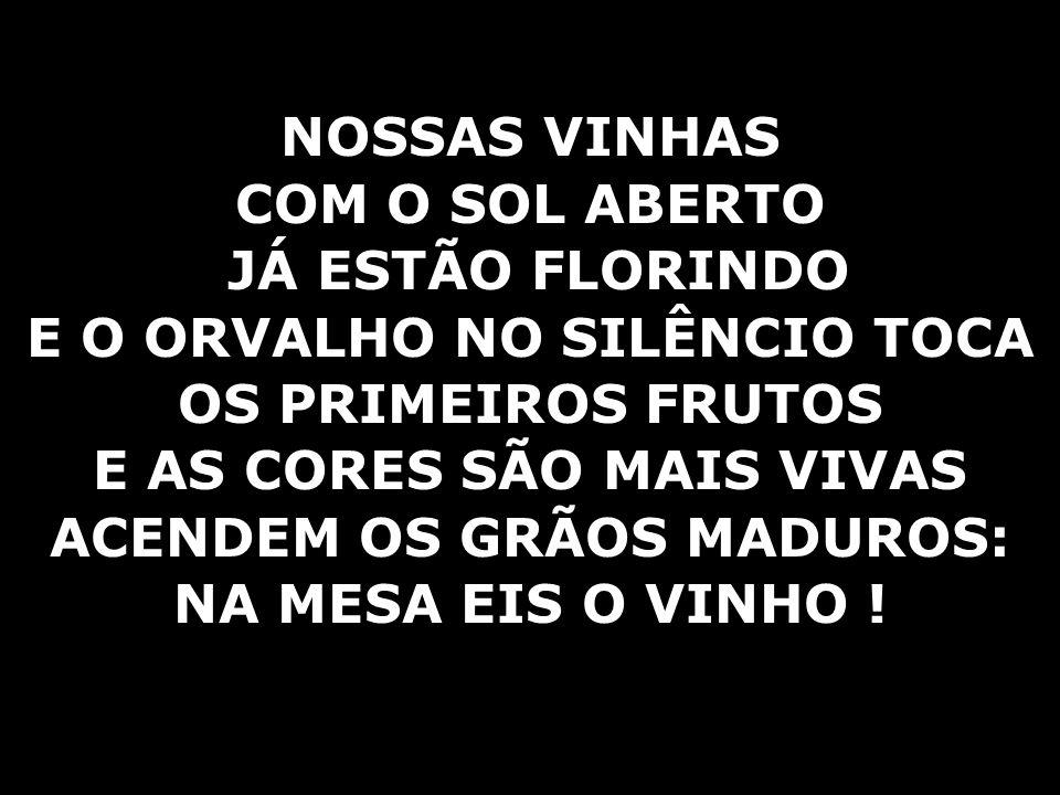 E O ORVALHO NO SILÊNCIO TOCA OS PRIMEIROS FRUTOS