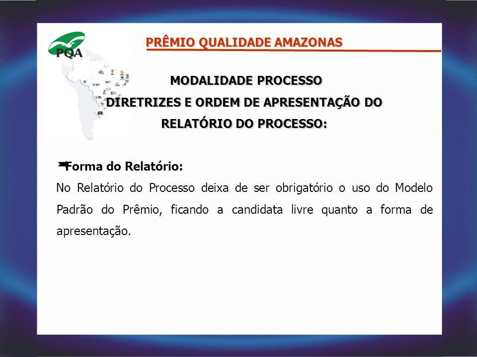 DIRETRIZES E ORDEM DE APRESENTAÇÃO DO RELATÓRIO DO PROCESSO: