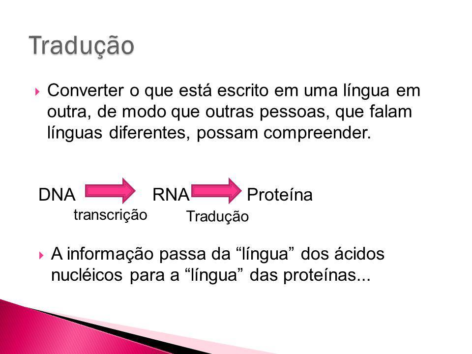 Tradução Converter o que está escrito em uma língua em outra, de modo que outras pessoas, que falam línguas diferentes, possam compreender.