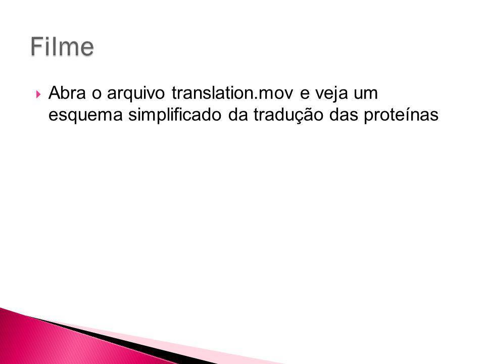 Filme Abra o arquivo translation.mov e veja um esquema simplificado da tradução das proteínas