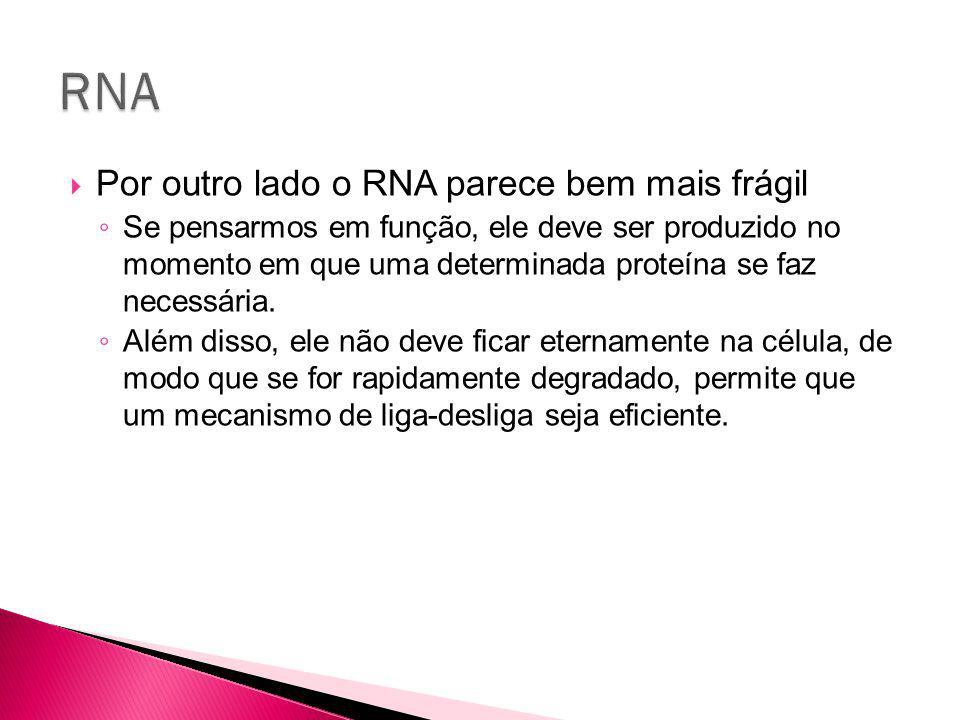 RNA Por outro lado o RNA parece bem mais frágil