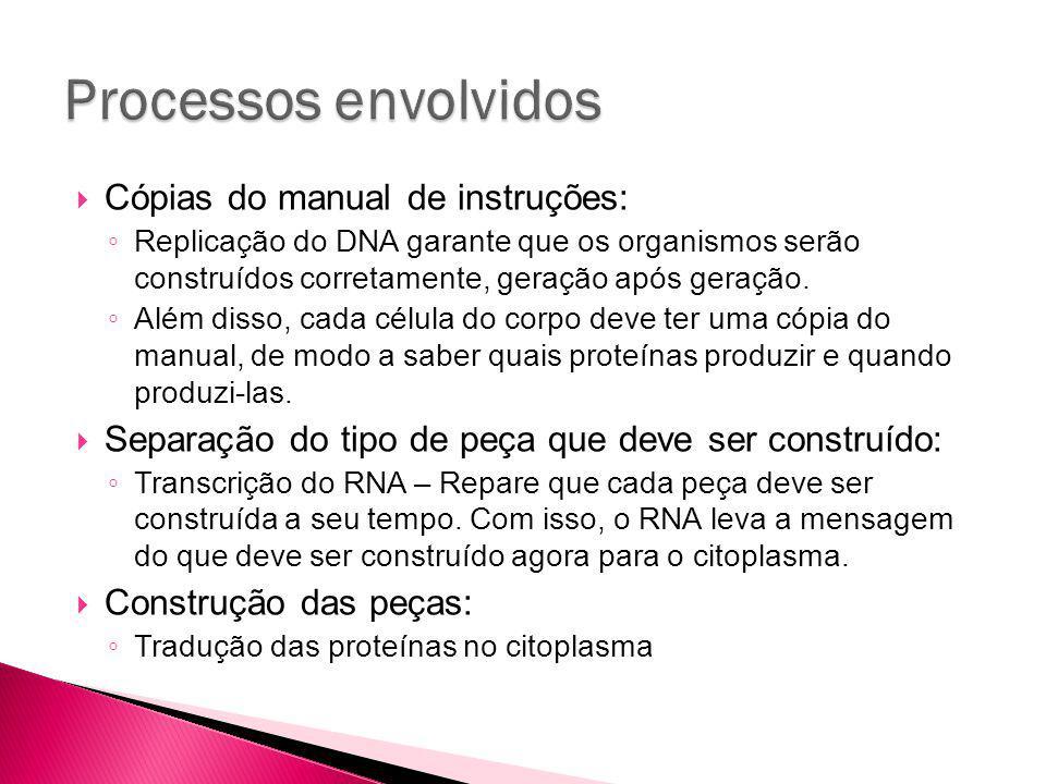 Processos envolvidos Cópias do manual de instruções: