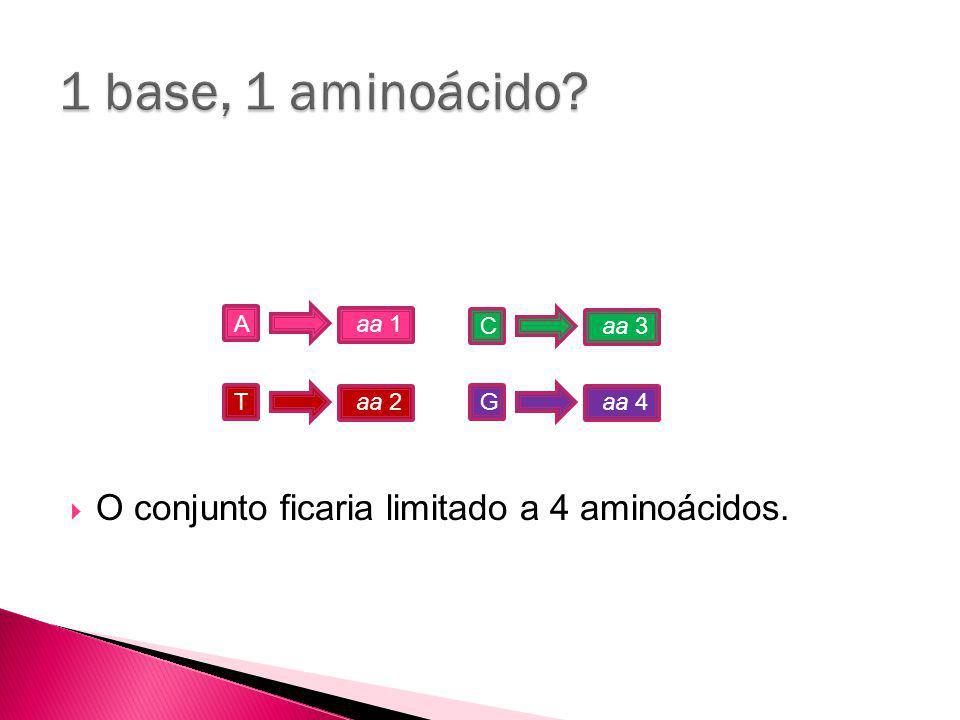 1 base, 1 aminoácido O conjunto ficaria limitado a 4 aminoácidos. A T
