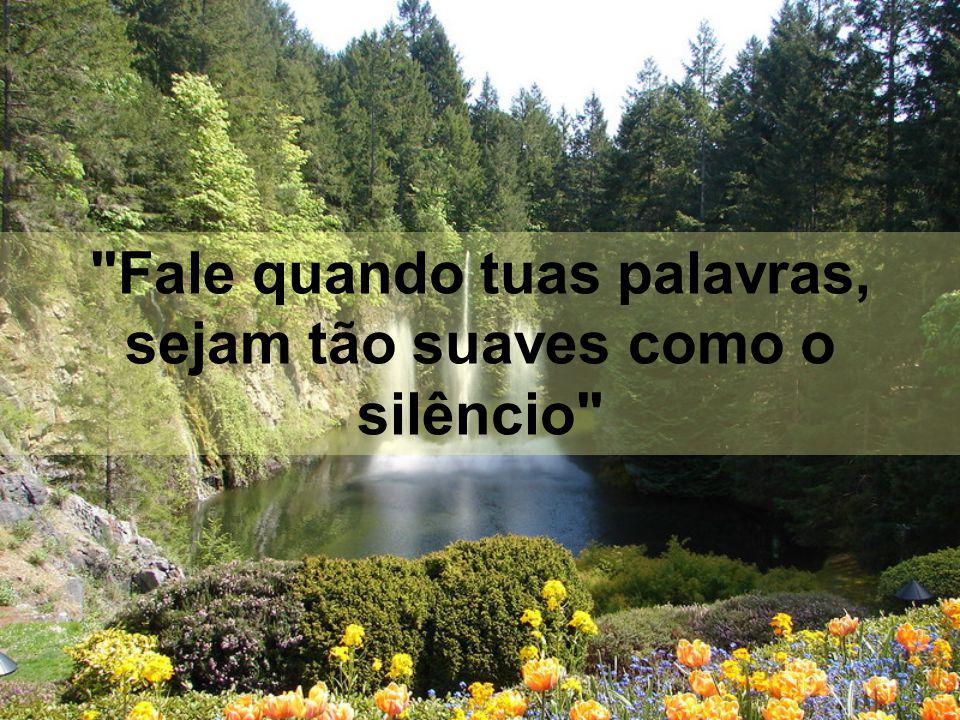 Fale quando tuas palavras, sejam tão suaves como o silêncio