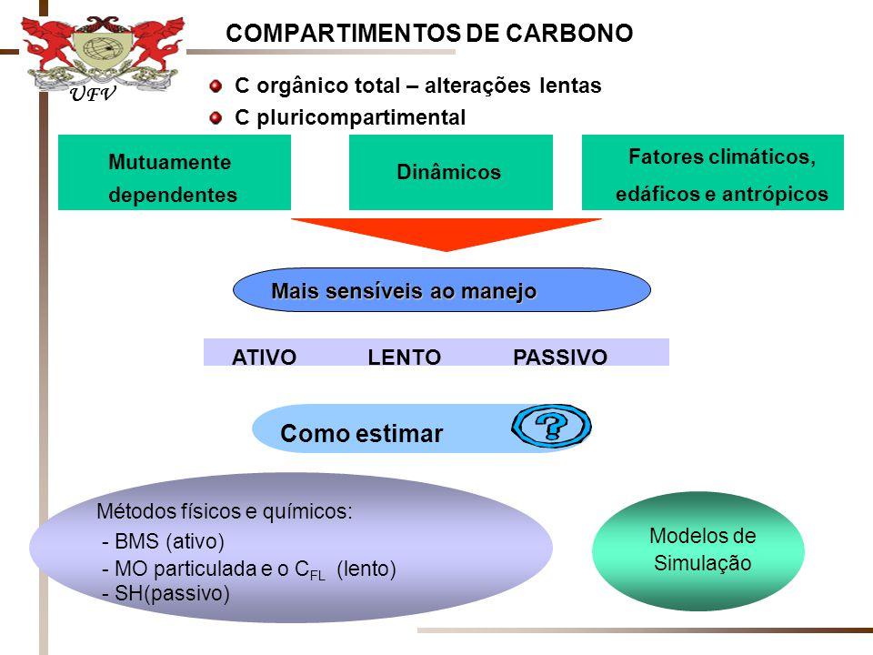 COMPARTIMENTOS DE CARBONO