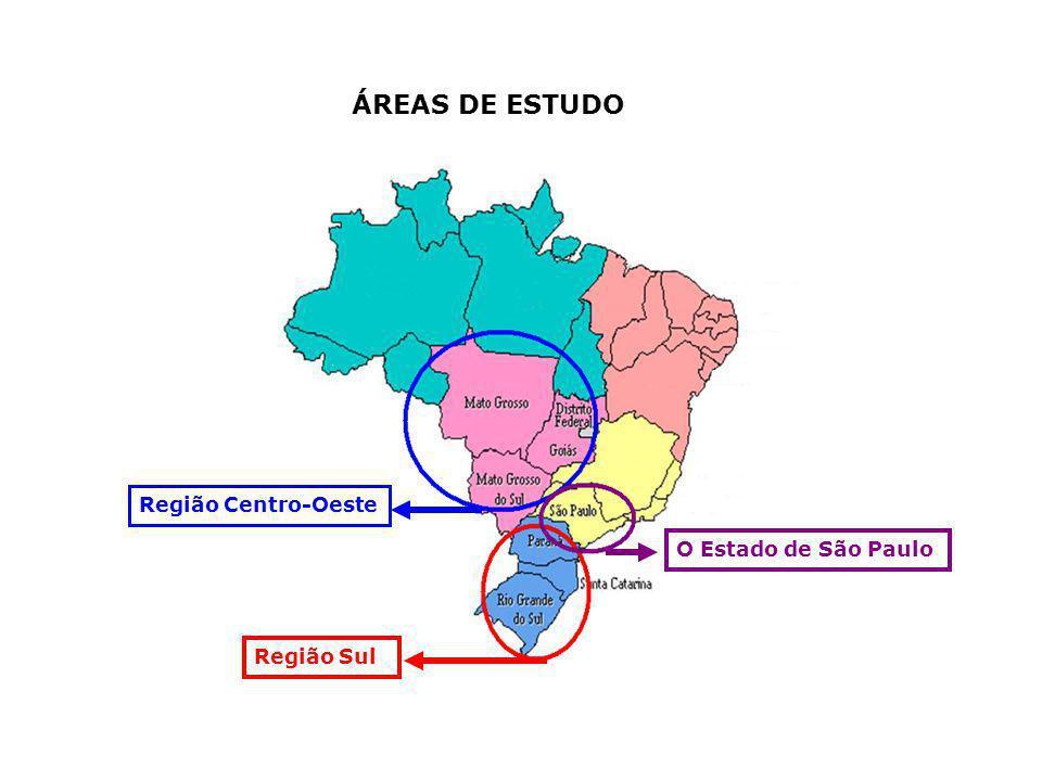 ÁREAS DE ESTUDO Região Centro-Oeste O Estado de São Paulo Região Sul
