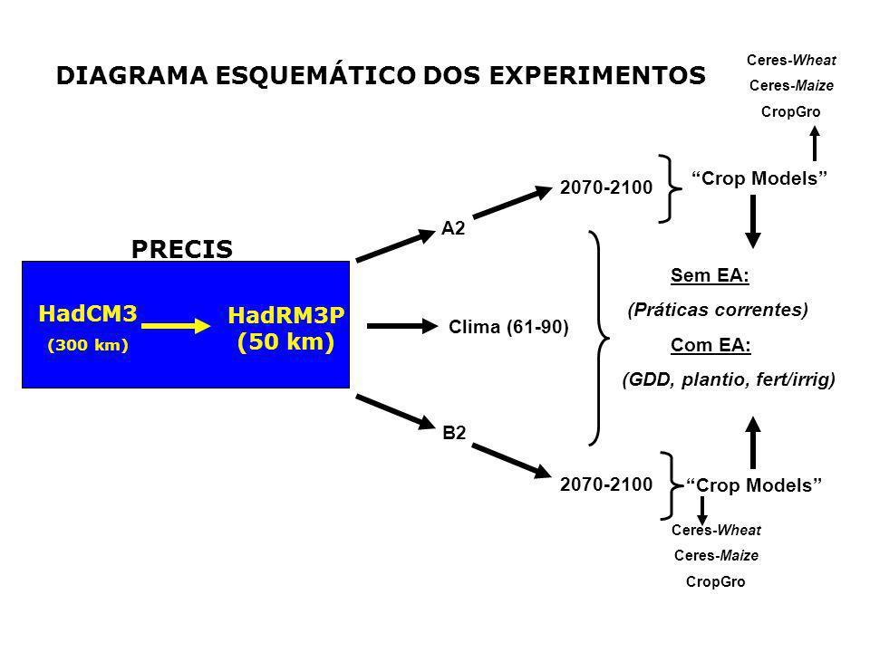 DIAGRAMA ESQUEMÁTICO DOS EXPERIMENTOS