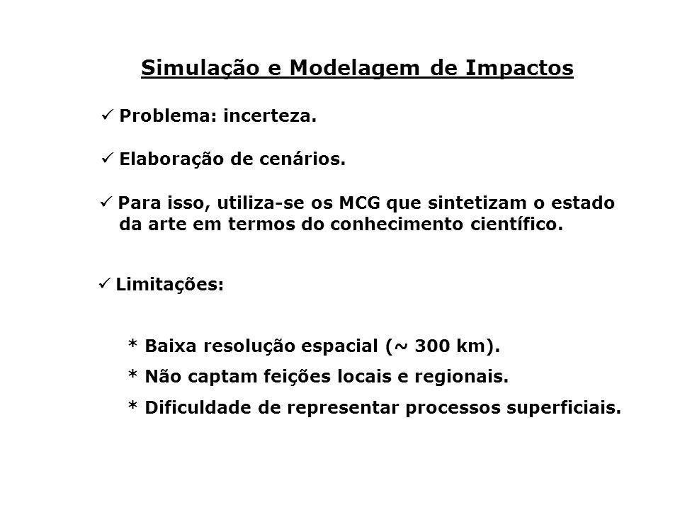 Simulação e Modelagem de Impactos