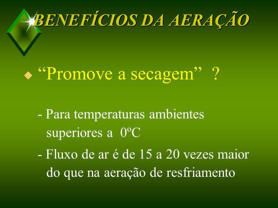 BENEFÍCIOS DA AERAÇÃO Promove a secagem