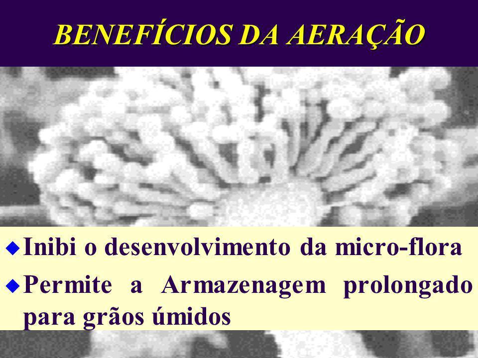 BENEFÍCIOS DA AERAÇÃO Inibi o desenvolvimento da micro-flora