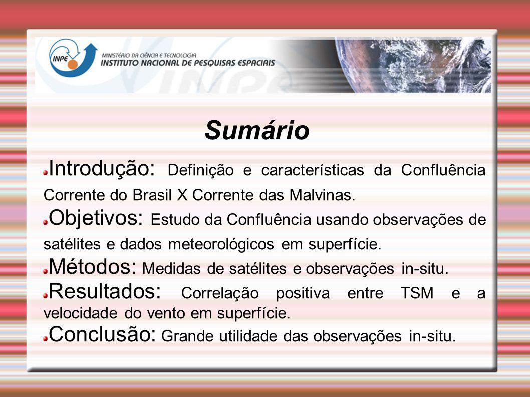 Sumário Introdução: Definição e características da Confluência Corrente do Brasil X Corrente das Malvinas.