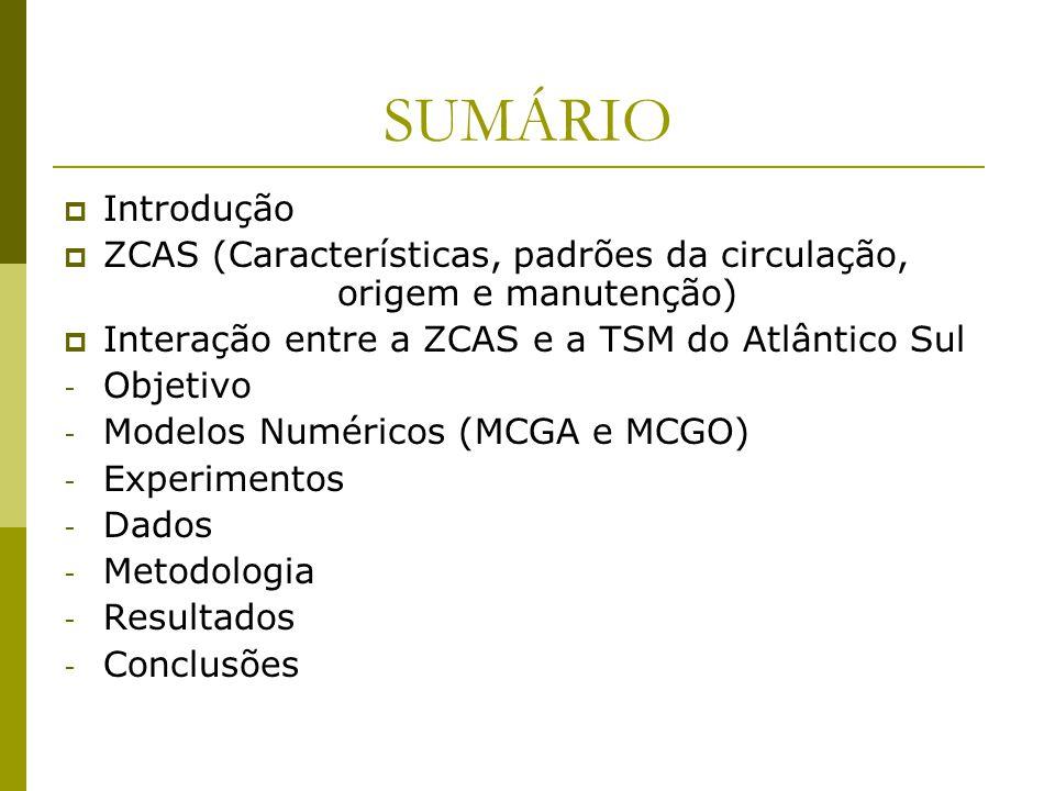 SUMÁRIO Introdução. ZCAS (Características, padrões da circulação, origem e manutenção) Interação entre a ZCAS e a TSM do Atlântico Sul.