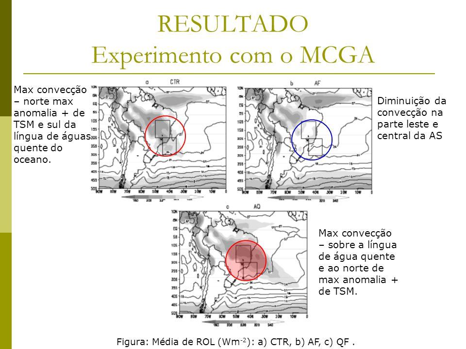 RESULTADO Experimento com o MCGA