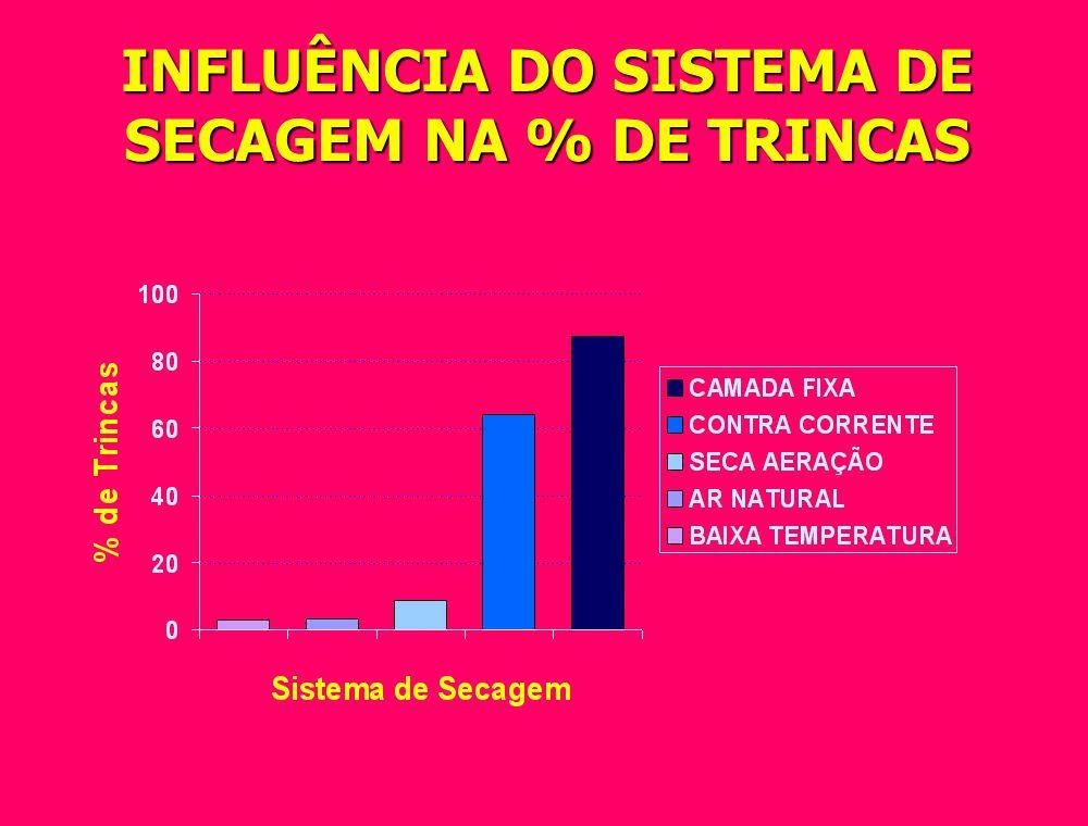 INFLUÊNCIA DO SISTEMA DE SECAGEM NA % DE TRINCAS
