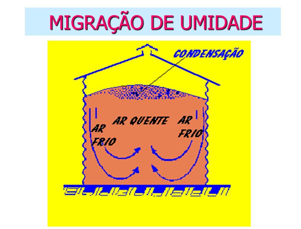 MIGRAÇÃO DE UMIDADE
