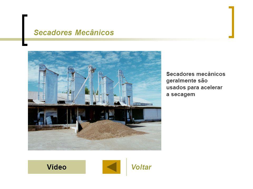 Secadores Mecânicos Vídeo Voltar
