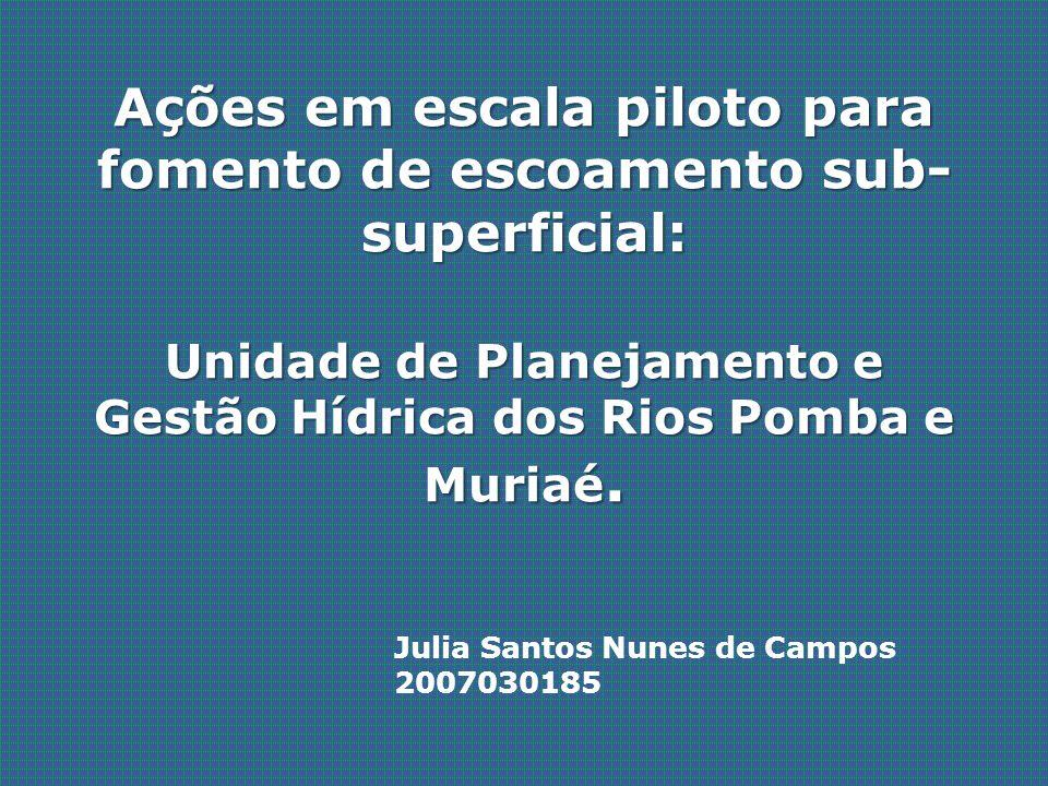 Ações em escala piloto para fomento de escoamento sub-superficial: Unidade de Planejamento e Gestão Hídrica dos Rios Pomba e Muriaé.