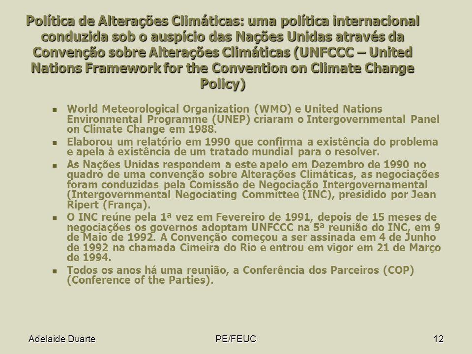 Política de Alterações Climáticas: uma política internacional conduzida sob o auspício das Nações Unidas através da Convenção sobre Alterações Climáticas (UNFCCC – United Nations Framework for the Convention on Climate Change Policy)