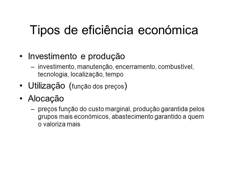 Tipos de eficiência económica