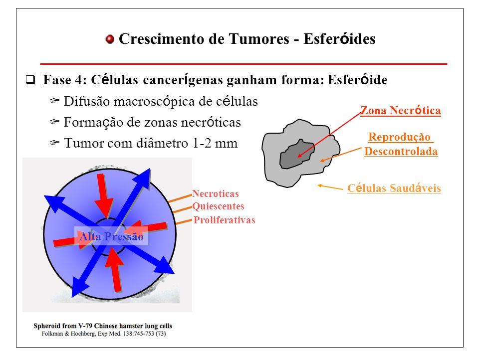 Crescimento de Tumores - Esferóides