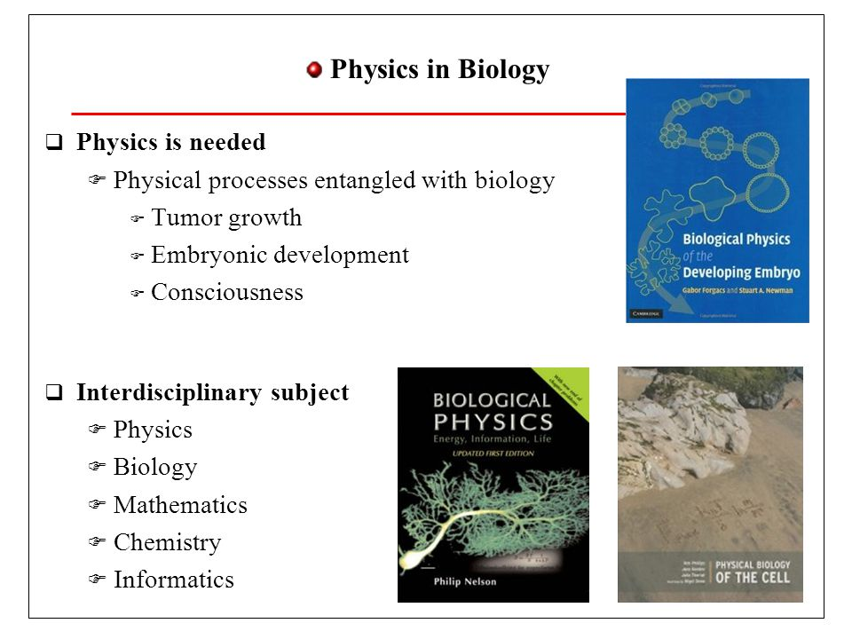 Physics in Biology Physics is needed