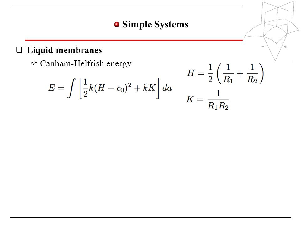 Simple Systems Liquid membranes Canham-Helfrish energy