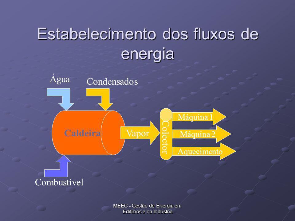 Estabelecimento dos fluxos de energia