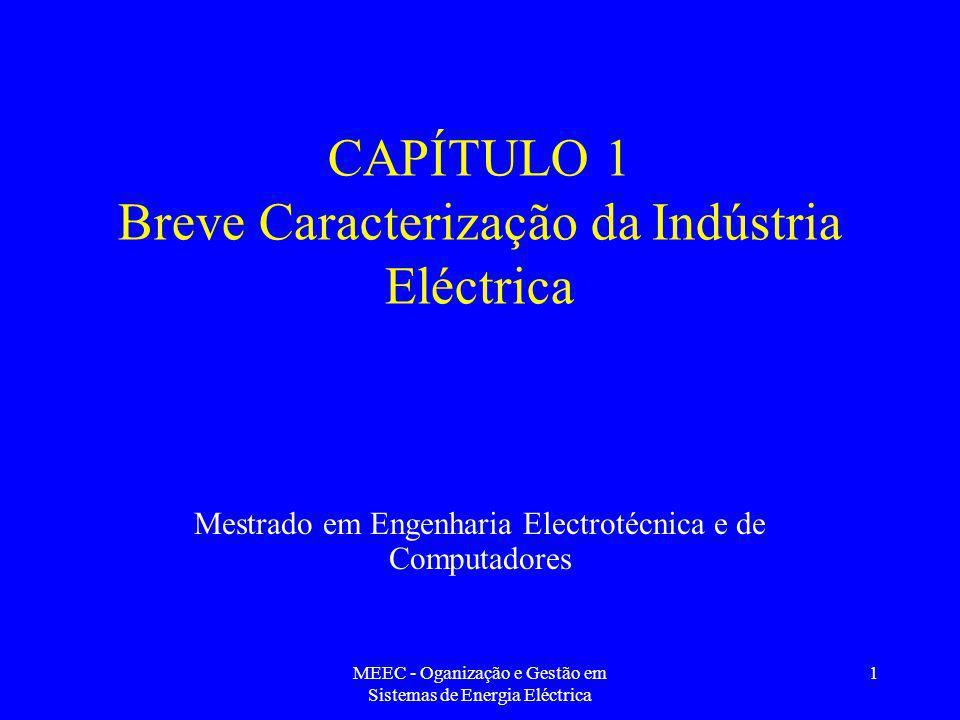 CAPÍTULO 1 Breve Caracterização da Indústria Eléctrica