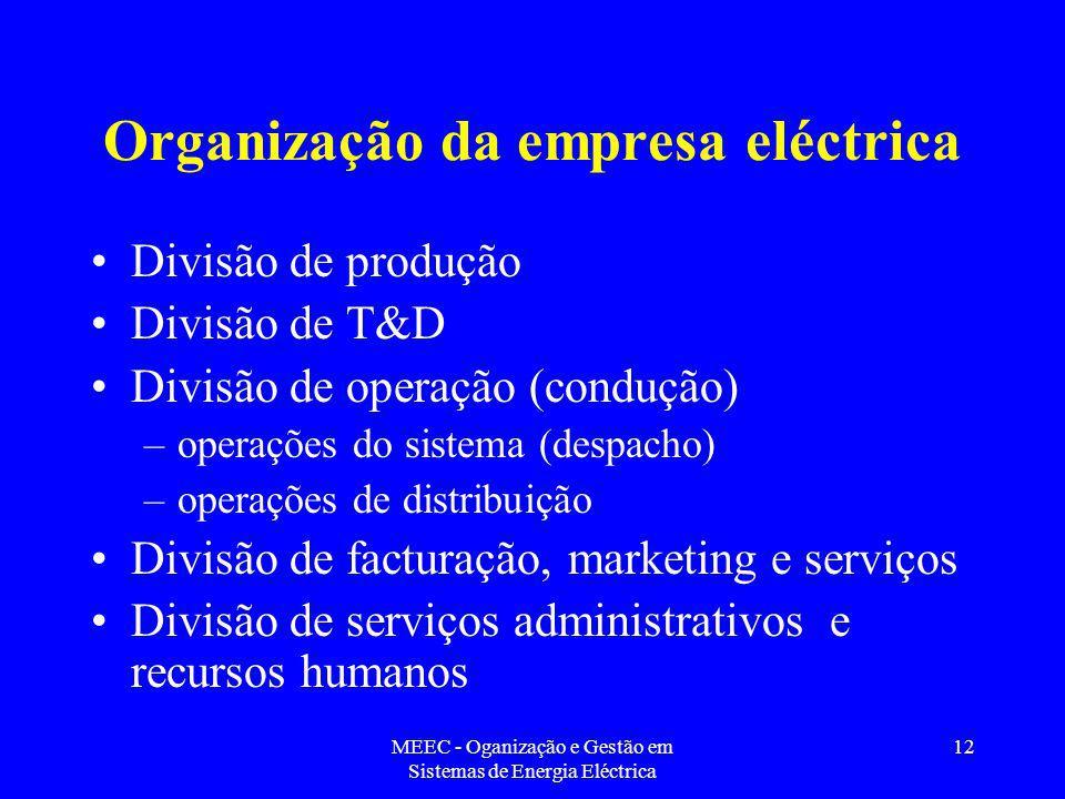 Organização da empresa eléctrica