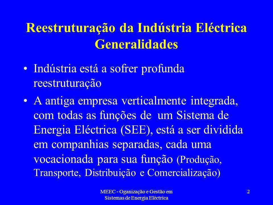 Reestruturação da Indústria Eléctrica Generalidades