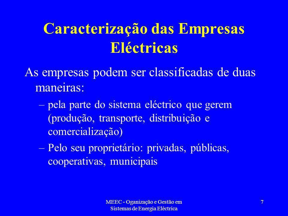 Caracterização das Empresas Eléctricas