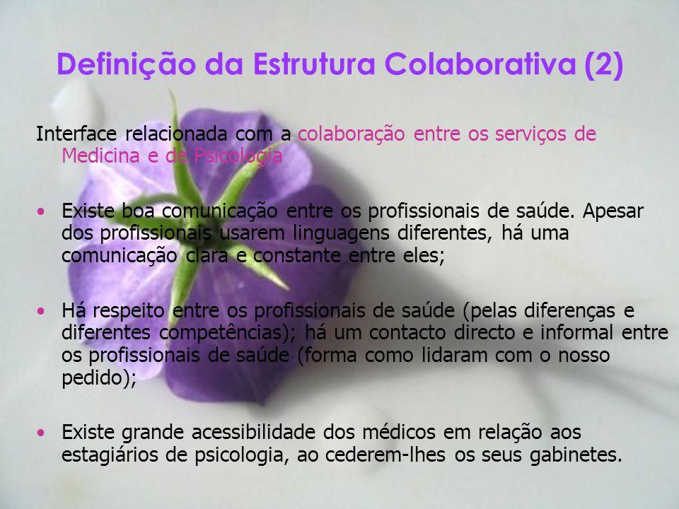 Definição da Estrutura Colaborativa (2)