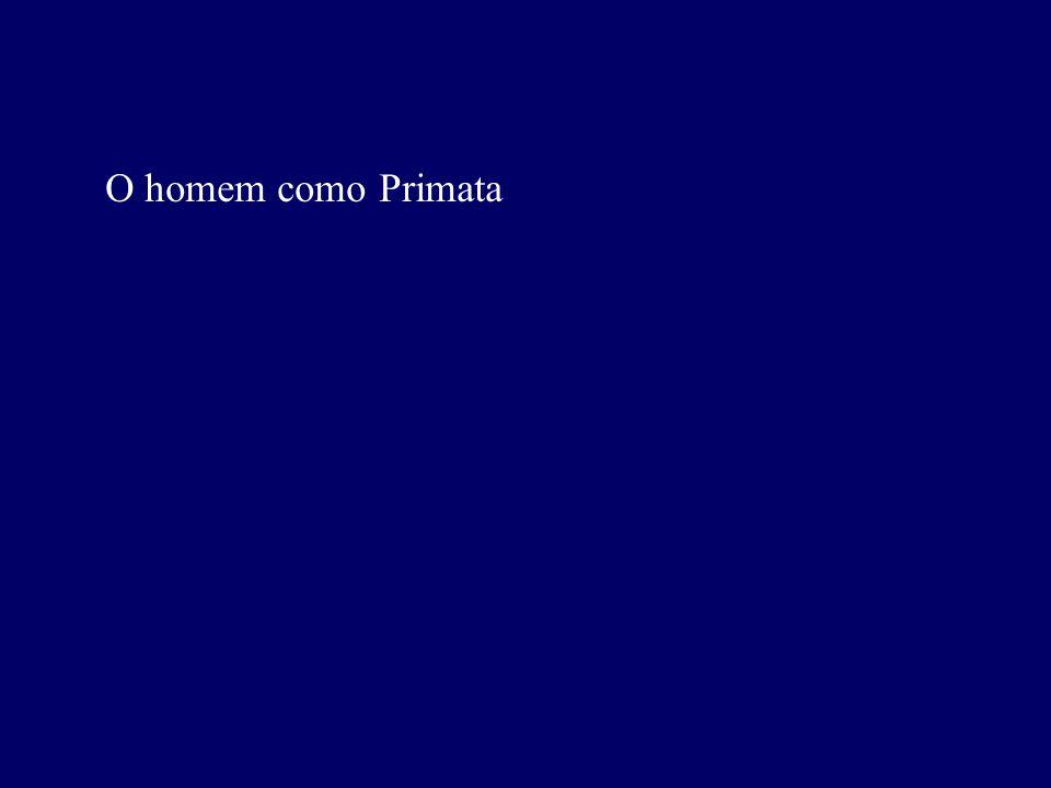 O homem como Primata