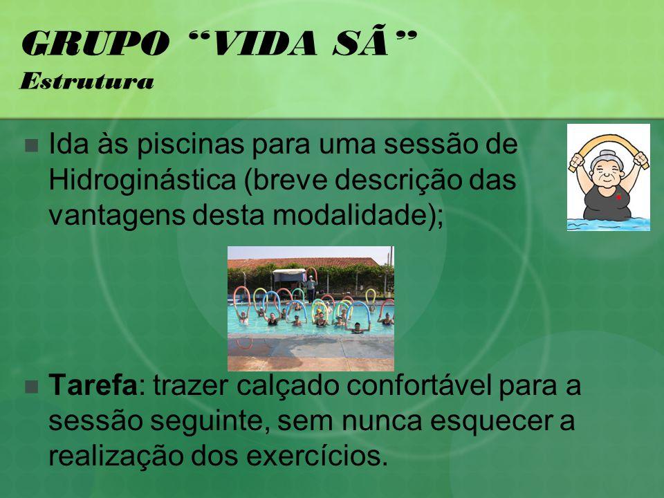 GRUPO VIDA SÃ Estrutura