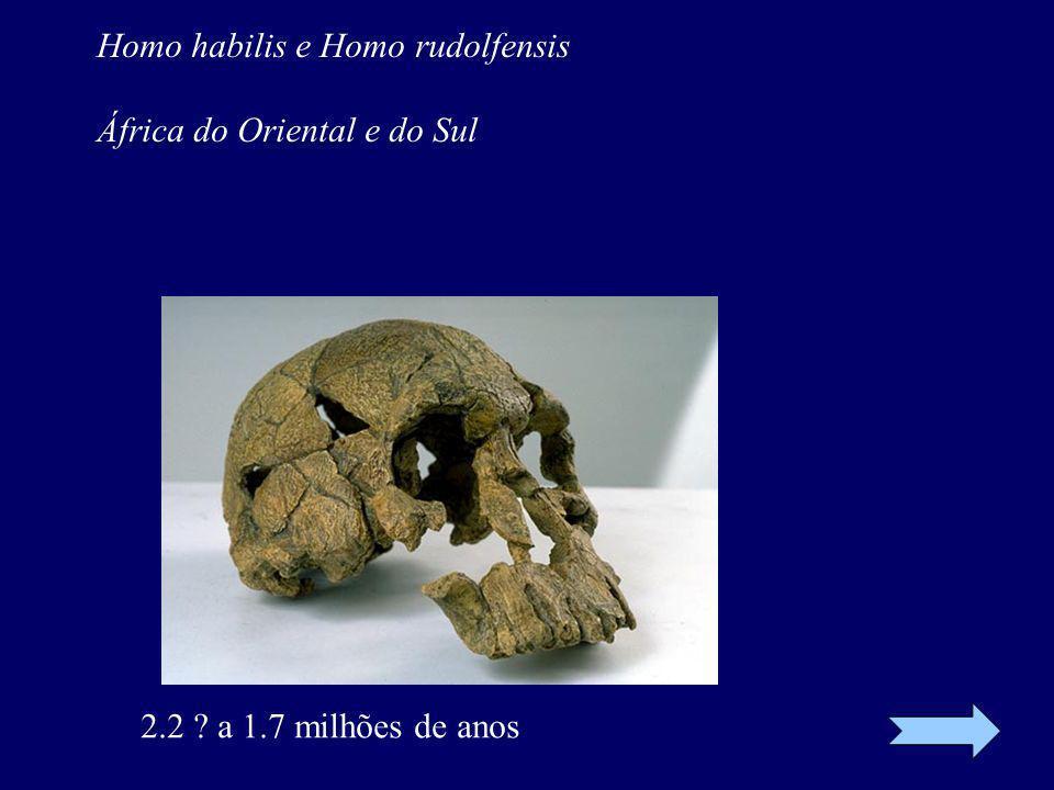 Homo habilis e Homo rudolfensis