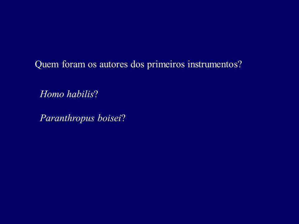 Quem foram os autores dos primeiros instrumentos