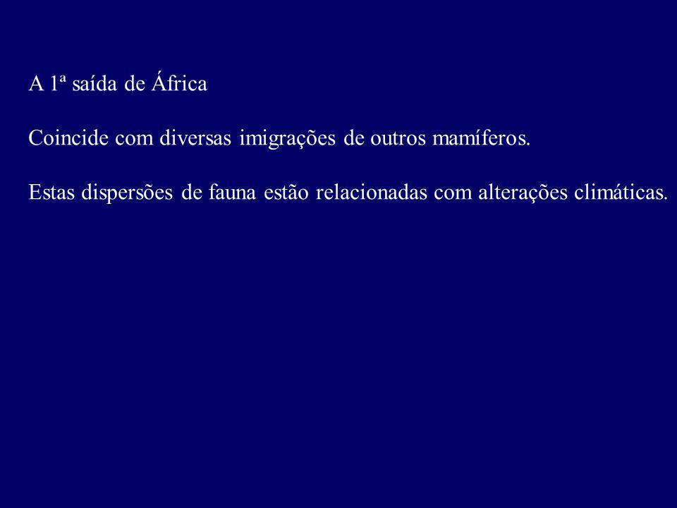 A 1ª saída de África Coincide com diversas imigrações de outros mamíferos.