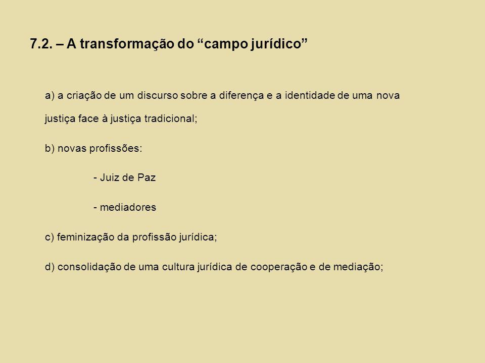 7.2. – A transformação do campo jurídico