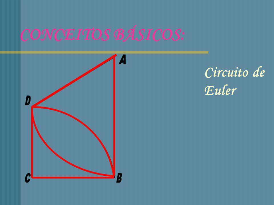 CONCEITOS BÁSICOS: A Circuito de Euler D C B