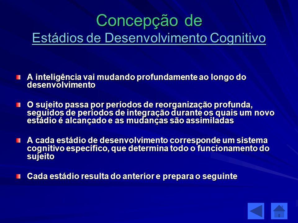 Concepção de Estádios de Desenvolvimento Cognitivo
