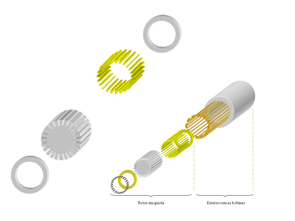 Rotor em gaiola Estator com as bobines