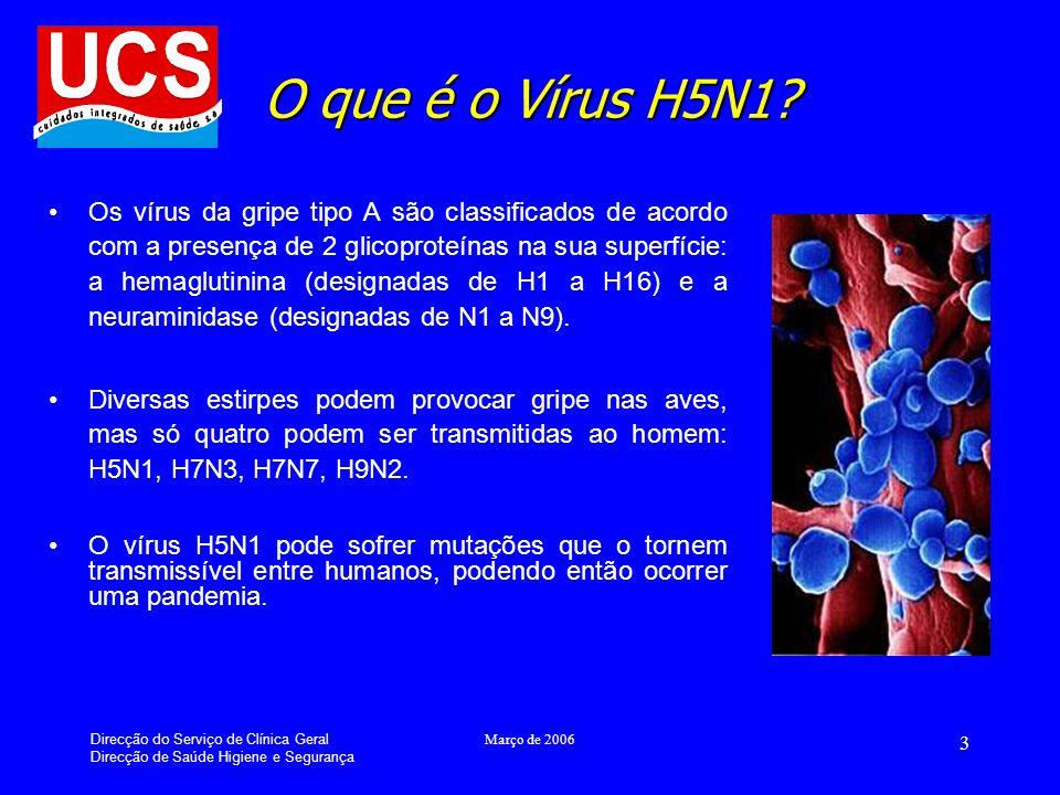 O que é o Vírus H5N1